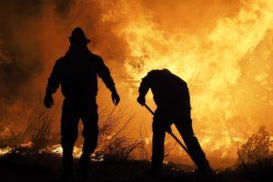 Assurance incendie IBIS